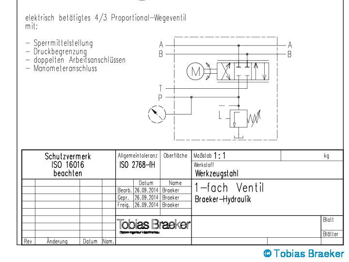 Tobias Braeker - Modellbau in feinster Technik